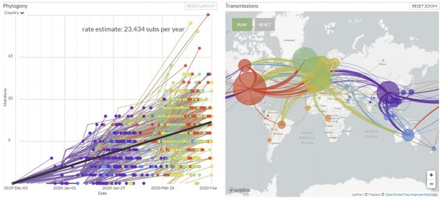 From this graphic you can see the chronology of how the virus spread around the world
