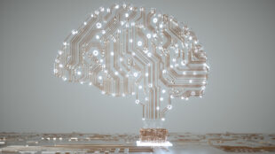 some-ai-advances-in-the-last-decade-may-have-been-illusory