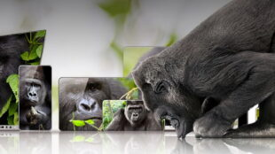new-corning-gorilla-glass-victus-can-survive-a-6-foot-drop