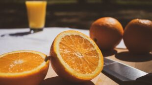 juicing-ai:-university-of-florida-taps-computer-vision-to-combat-citrus-disease
