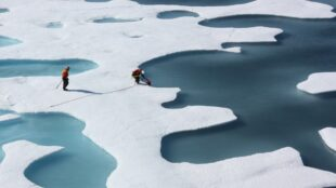 on-thin-ice:-arctic-ai-model-predicts-sea-ice-loss